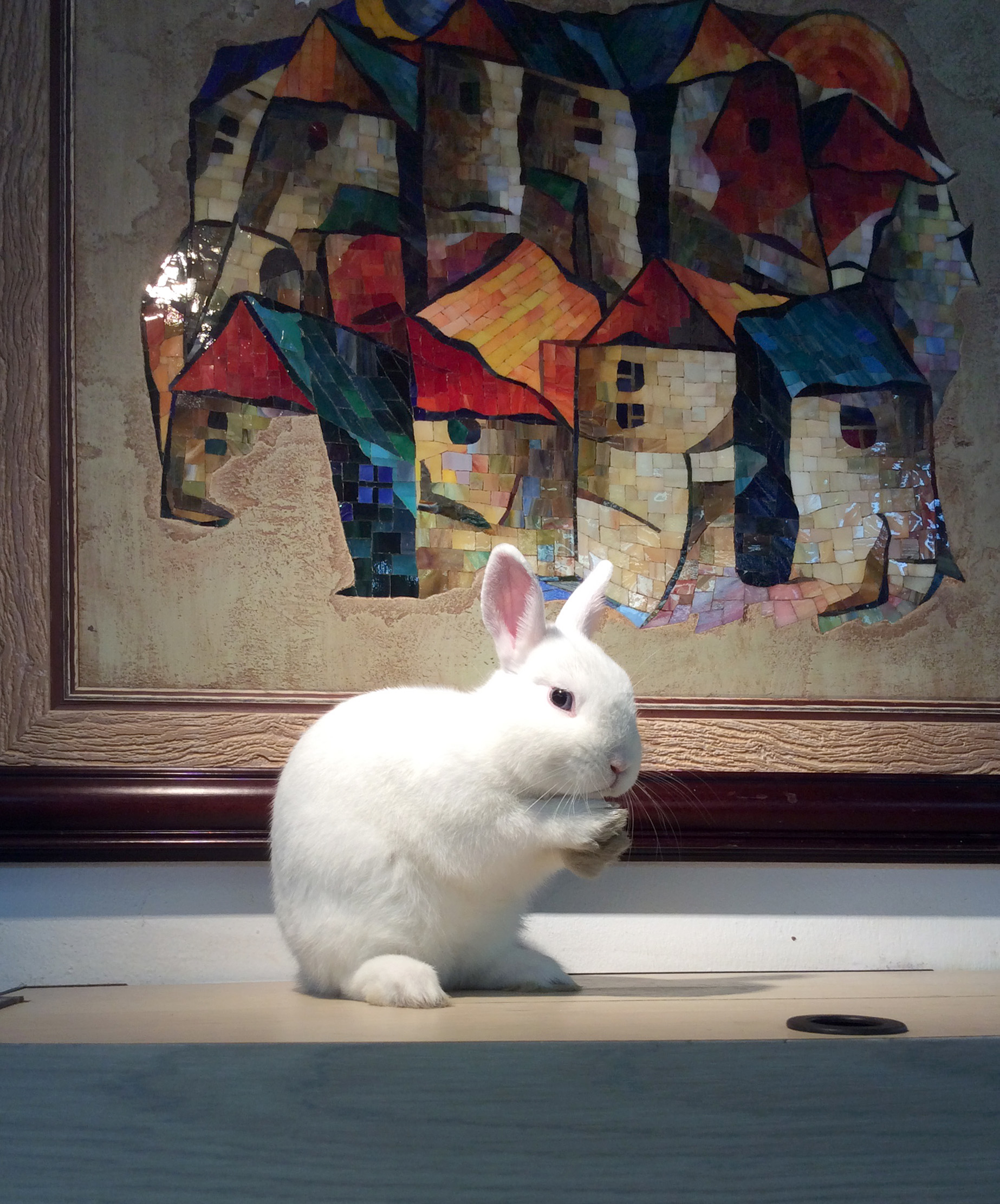 Rabbit through the Looking-Glass mosaic 2